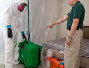 household mold remediation specialist