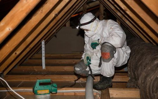 Why Should You Always Use Professional Attic Cleaning Service
