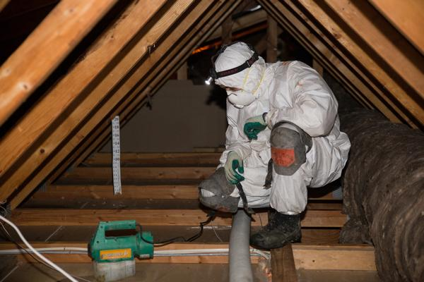 Professional Attic Cleaning Service