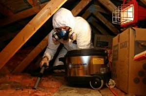 attic cleaning service